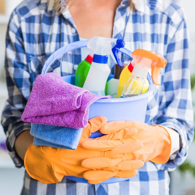 Empregados domésticos no eSocial