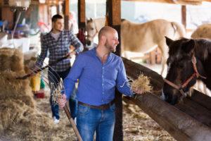 Receita orienta sobre recolhimento da contribuição do Produtor Rural PF