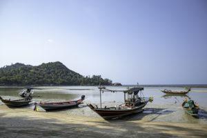 INSS conclui processamento automático do Seguro Defeso do Pescador Artesanal