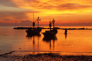 Pescadores: descadastramento voluntário do seguro-defeso