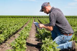Instrução Normativa altera regras de obrigatoriedade da entrega do Livro Caixa Digital do Produtor Rural